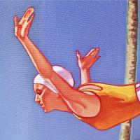 Dennis Ziemienski: California Diver