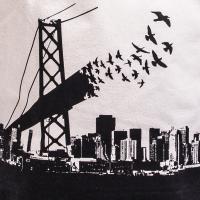 Musette Bay Bridge Birds